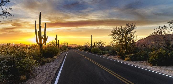 Arizona People Search